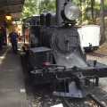 Puffing Billy Steam Train Victoria